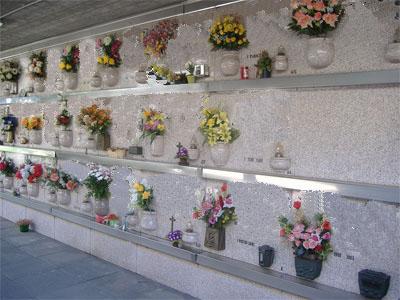 Cimitero di Bonamorone chiuso per disinfestazione