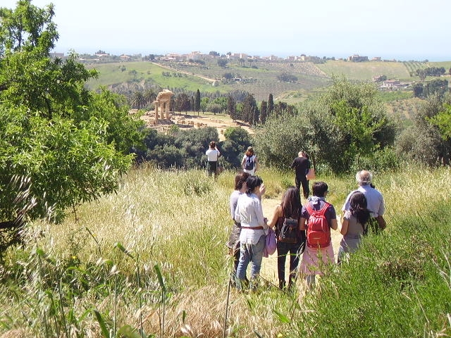 Gal Sicilia Centro Meridionale, scadrà il 29 giugno il bando per le attività extra agricole
