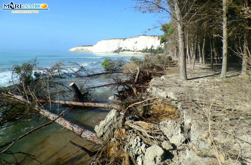 La spiaggia di Eraclea Minoa sempre più aggredita dall'erosione: denuncia di MareAmico