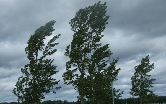 Il vento forte crea disagi in tutto l'agrigentino, conta dei danni anche in città