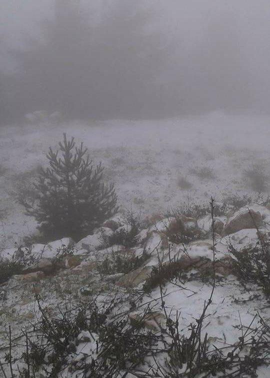 Arriva la prima neve su Monte Cammarata