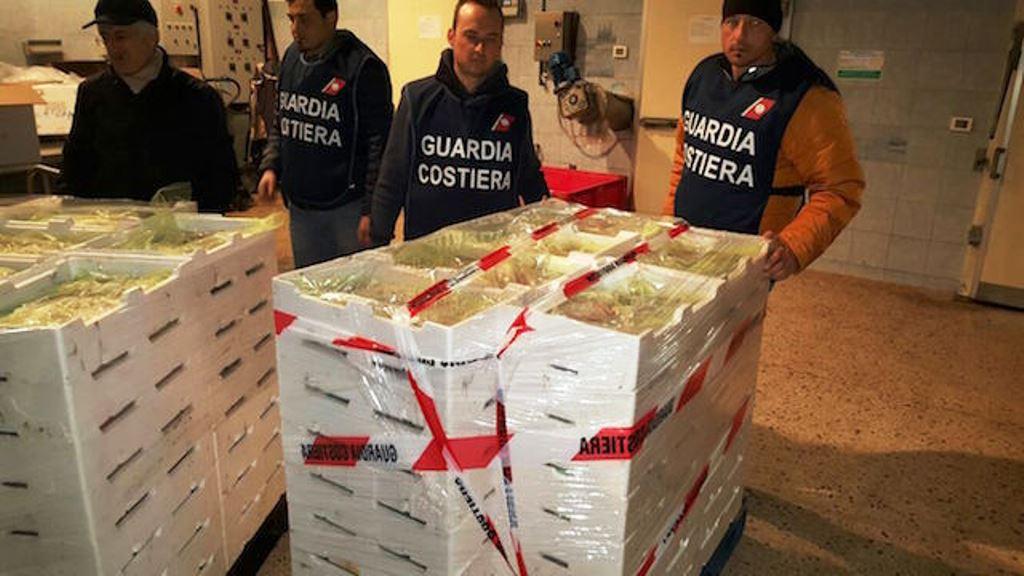 Capitaneria di Porto Empedocle: sicurezza sugli alimenti non garantita, sequestrati di circa 200 kg di prodotti ittici privi di tracciabilità
