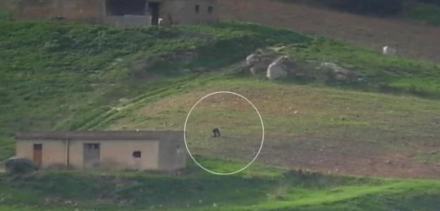 Blitz contro i fiancheggiatori di Messina Denaro