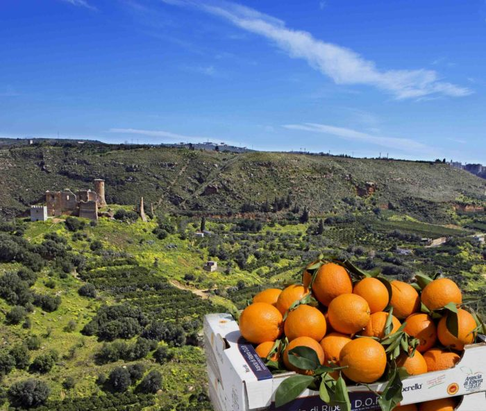 """""""Riberella Winter Food Festival"""", dal 6 al 9 dicembre la Sagra dell'arancia di Ribera"""