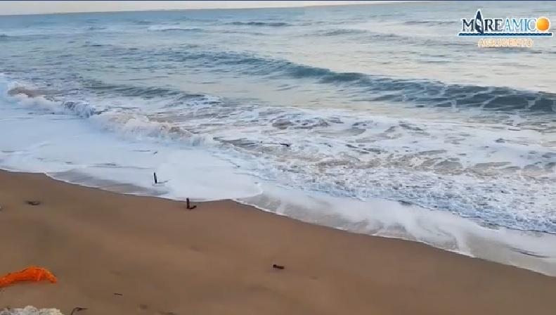 """""""Pericoli sulla spiaggia delle Dune"""": l'allarme di MareAmico Agrigento – VIDEO"""