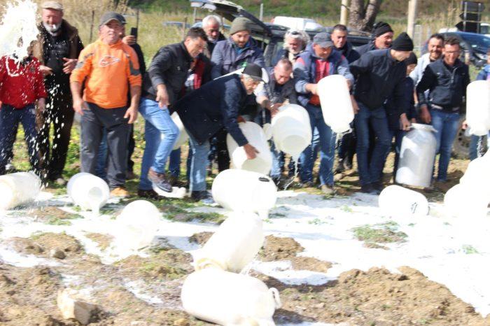 Anche in Sicilia la prima protesta dei produttori di latte