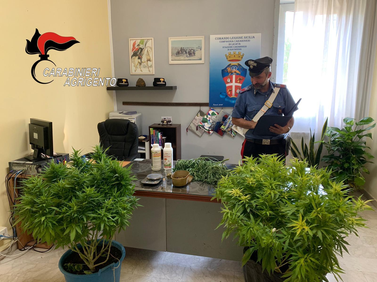 Blitz antidroga dei carabinieri nell'agrigentino: due persone in manette