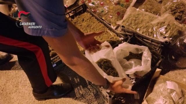 Aveva 100 chili di marijuana a casa, arrestato un licatase