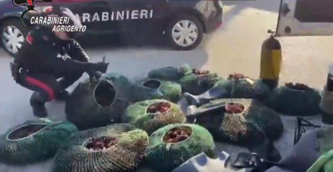 Operazione dei Carabinieri contro la pesca di frodo, tre catanesi nei guai